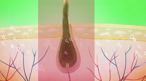 tricoglam,led,prevent hair loss